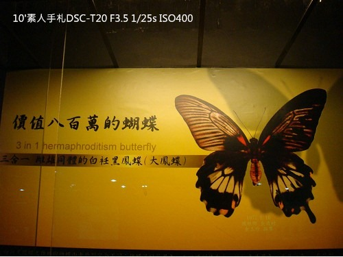 2010013124